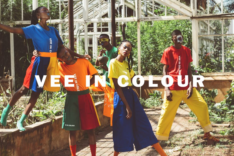 A Vee in Colour poster with people posing in a garden house in brightly colour clothing