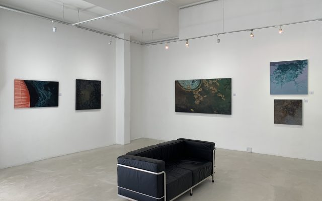 Surface and Depth – A Duo Exhibition by Laurel Holmes and Danielle Malherbe