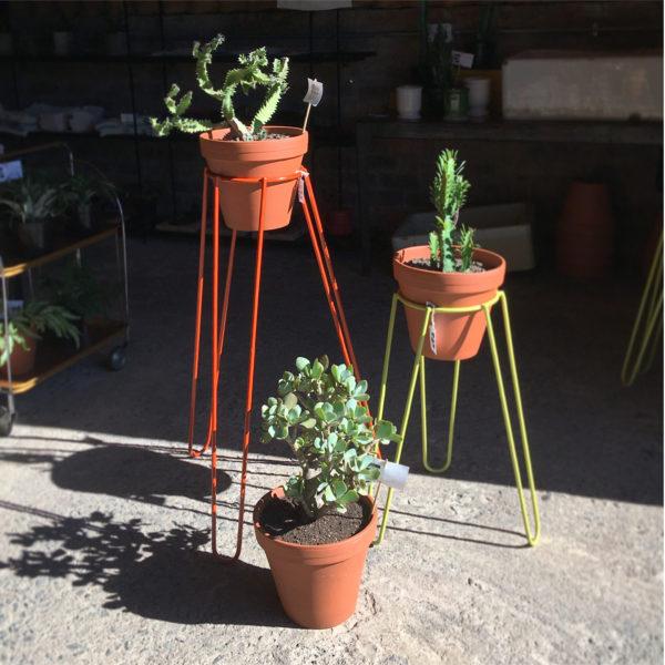 Plant Stand Trio